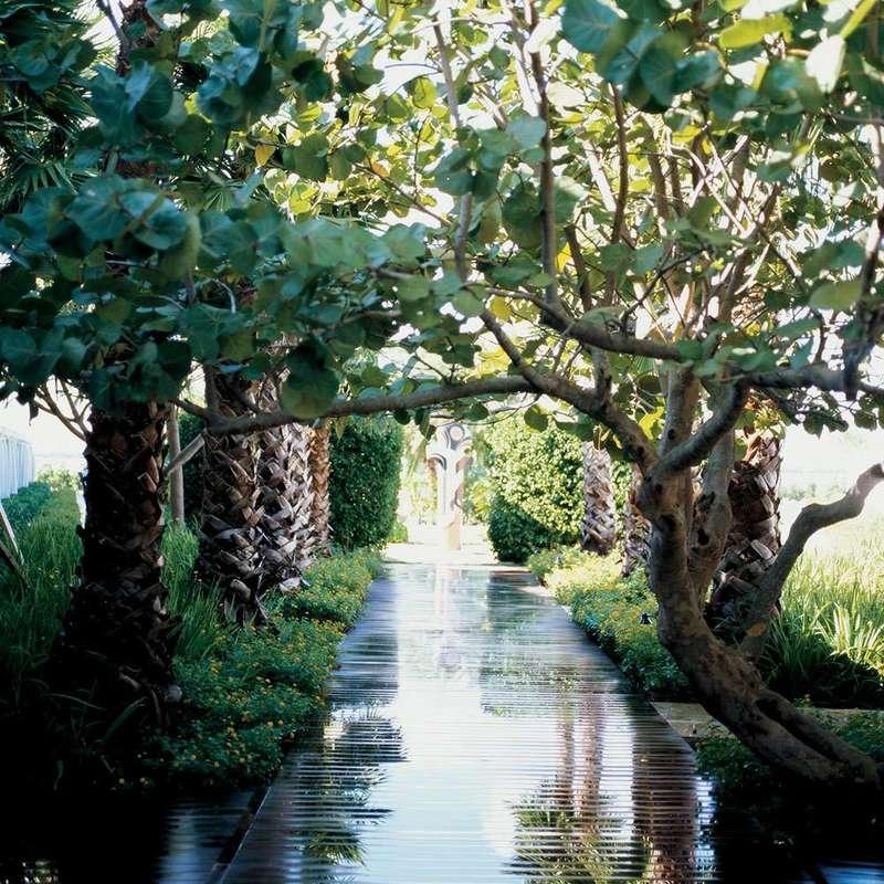 Jardines de The Standard Miami. Foto: standardhotels.com